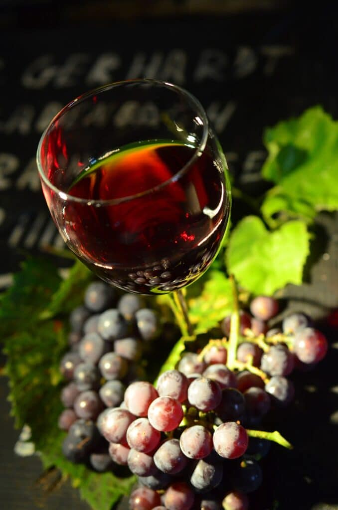 France's 5 Unique Traditions: Wine holiday